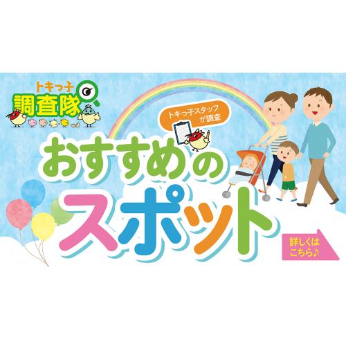 【コンテンツ紹介】トキっ子スタッフが調査!おすすめスポット